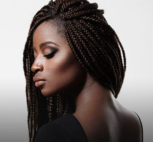 Kinky Hair Braids Extension
